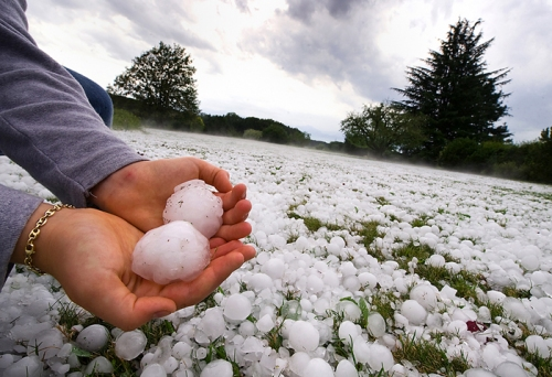 SWITZERLAND-METEO-HAILSTONES